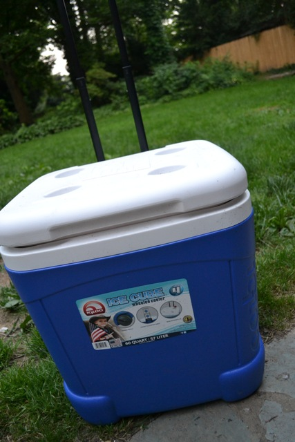 ice cooler for drinks and food