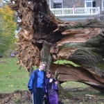 kids standing in front of fallen tree