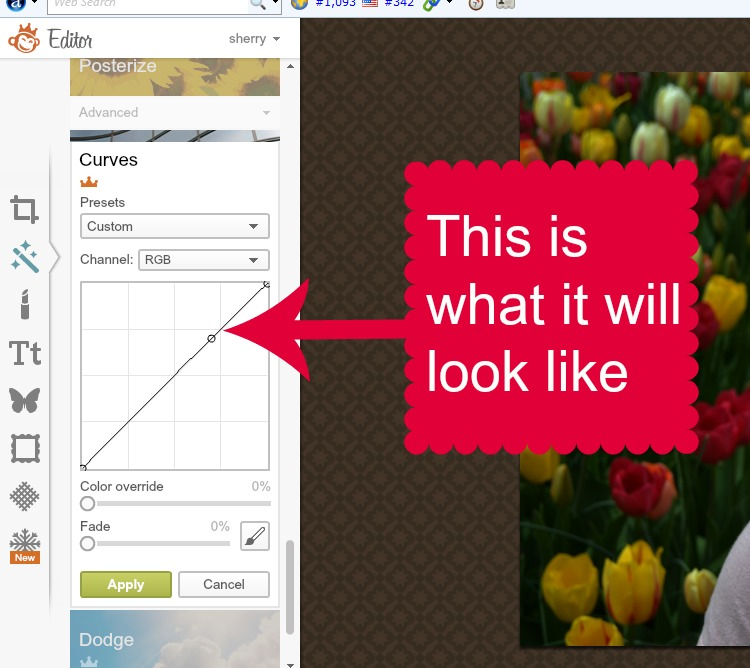 how to change a picture on picmonkey